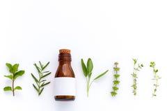 Botella de aceite esencial con la hoja santa de la albahaca de la hierba, romero, oreg foto de archivo libre de regalías