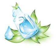 Botella de agua con las plantas Imágenes de archivo libres de regalías