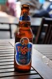 Botella de cerveza asiática del tigre de la cerveza dorada en una tabla de madera en un Vietname Imagen de archivo