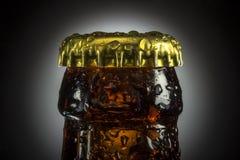 Botella de cerveza con las gotitas de agua Imágenes de archivo libres de regalías