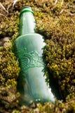 Botella de cerveza cubierta con los musgos imagen de archivo