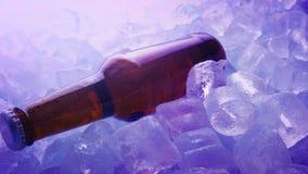 Botella de cerveza en el hielo en club nocturno metrajes