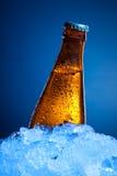 Botella de cerveza en hielo Fotos de archivo libres de regalías