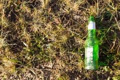 Botella de cerveza en hierba Foto de archivo libre de regalías