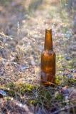Botella de cerveza en la tierra Imagen de archivo
