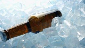 Botella de cerveza en los cubos de hielo que mueven el tiro almacen de video