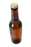 Botella de cerveza fría Foto de archivo libre de regalías
