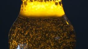 Botella de cerveza fría fresca almacen de video