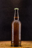 Botella de cerveza marrón fría en negro Foto de archivo
