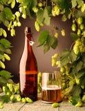 Botella de cerveza y con los saltos Imagen de archivo