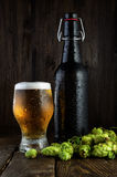Botella de cerveza y vidrio de cerveza con los saltos Imágenes de archivo libres de regalías