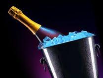 Botella de champán en cubo de hielo fotos de archivo