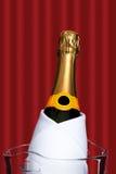 Botella de Champán en cubo de hielo Imagen de archivo libre de regalías
