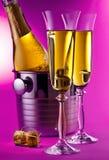 Botella de Champán en refrigerador Imagen de archivo