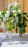 Botella de cristal con las ramas florecientes de la cereza, manzano imagenes de archivo