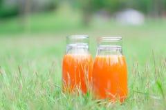 Botella de cristal del primer de fruta del zumo de naranja en el fondo de la naturaleza de la hierba verde, concepto sano de la c imagenes de archivo
