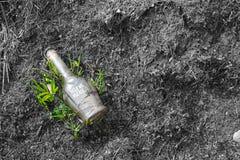 Botella de cristal en el concepto del problema de ambiente del bosque Imagenes de archivo