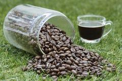 Botella de grano de café Imagen de archivo