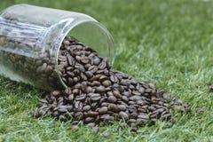 Botella de grano de café Foto de archivo