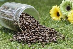 Botella de grano de café Imágenes de archivo libres de regalías
