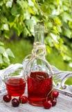Botella de jugo de la cereza en el jardín Fotos de archivo libres de regalías