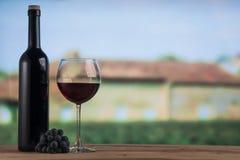 Botella de la copa de vino roja y de vino rojo en el backgroung del lagar Foto de archivo libre de regalías