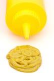Botella de la mostaza Imagen de archivo libre de regalías