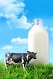 Botella de leche en la hierba Fotos de archivo libres de regalías