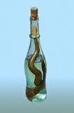 Botella de licor de la víbora Imagen de archivo libre de regalías