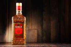 Botella de oro del Tequila de Olmeca Foto de archivo libre de regalías