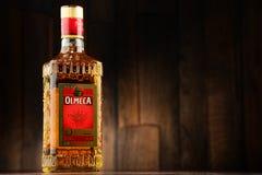 Botella de oro del Tequila de Olmeca Imagen de archivo libre de regalías