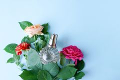 Botella de perfume con las flores en fondo azul del color con el espacio de la copia fotografía de archivo libre de regalías