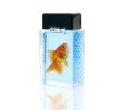Botella de perfume con los pescados del oro Imagen de archivo libre de regalías