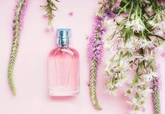Botella de perfume floral con las hierbas y las flores frescas en el fondo rosado, visión superior imagen de archivo libre de regalías