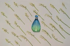 Botella de perfume y de lirios de las flores del valle en fondo en colores pastel ligero Perfumería, fragancia, concepto cosmétic fotografía de archivo