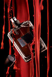 Botella de perfume y pintura roja Fotos de archivo libres de regalías