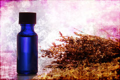 Botella de petróleo esencial de Aromatherapy del extracto de la lavanda Fotografía de archivo