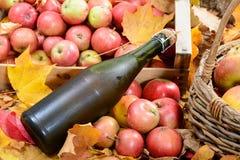 Botella de sidra de Normandía, con muchas manzanas Imagenes de archivo