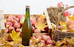Botella de sidra de Normandía, con muchas manzanas Fotos de archivo