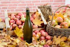 Botella de sidra de Normandía, con muchas manzanas Imágenes de archivo libres de regalías