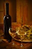 Botella de vino con dos vidrios Foto de archivo libre de regalías