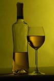 Botella de vino con el vidrio Fotografía de archivo libre de regalías