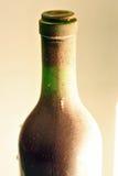 Botella de vino rojo Imagenes de archivo