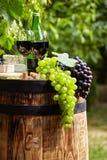 Botella de vino rojo con la copa y las uvas en viñedo Fotografía de archivo