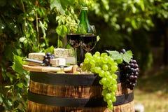 Botella de vino rojo con la copa y las uvas en viñedo Foto de archivo libre de regalías