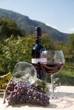 Botella de vino rojo con las copas Imagen de archivo