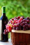Botella de vino rojo y de uvas Imágenes de archivo libres de regalías