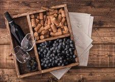 Botella de vino tinto y de vidrios vacíos con las uvas oscuras con los corchos y abrelatas dentro de la caja de madera del vintag fotos de archivo libres de regalías