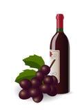 Botella de vino y de uvas Foto de archivo