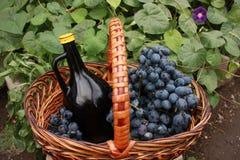 Botella de vino y de uvas en cesta Fotografía de archivo